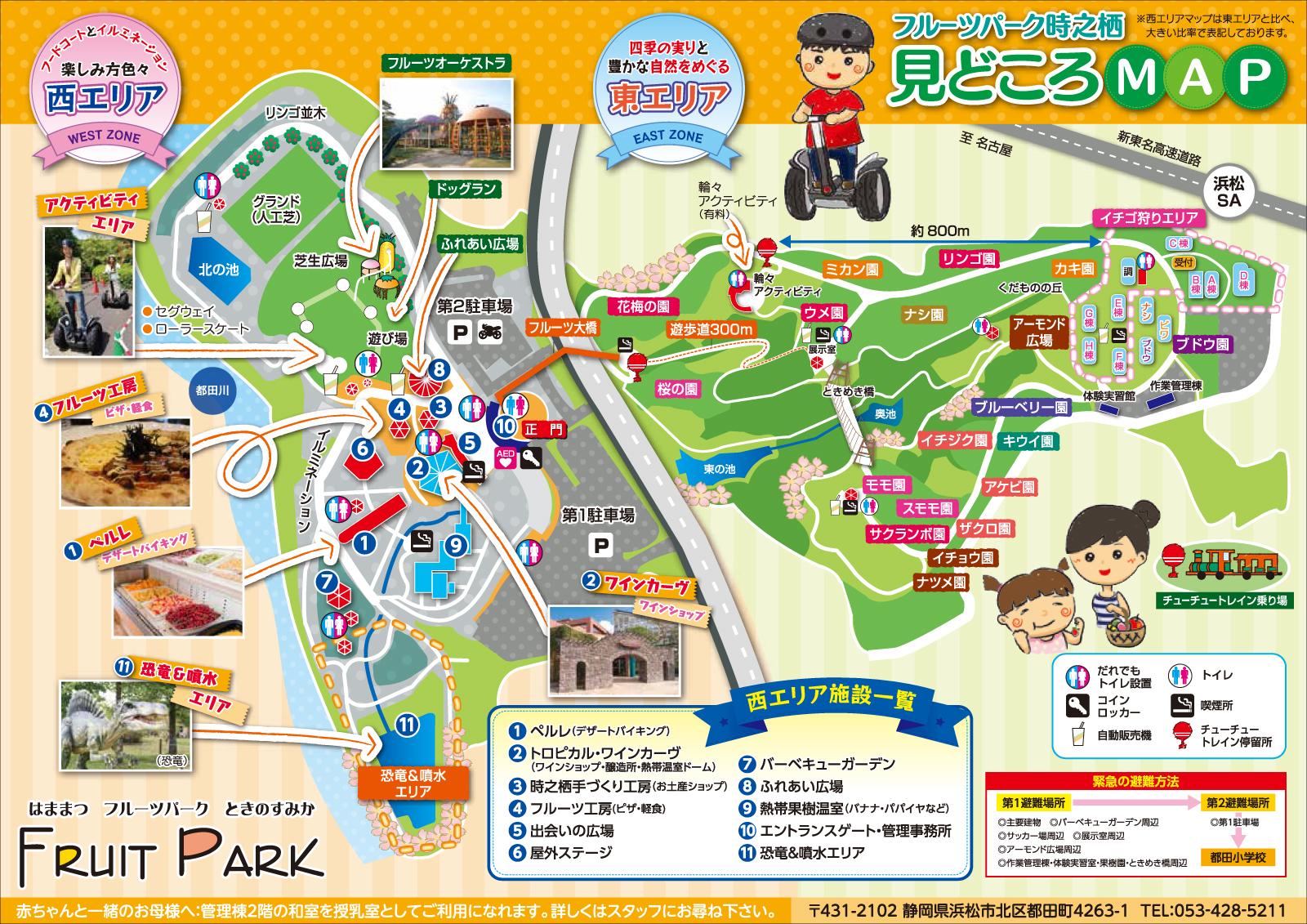 http://www.inhamamatsu.com/activity/hfpt2.jpg