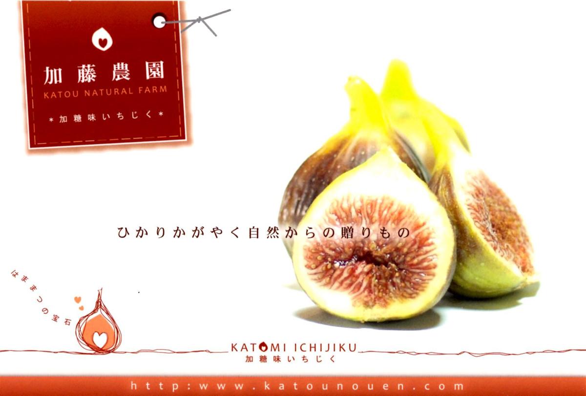 http://www.inhamamatsu.com/recommend/ijg3.jpg